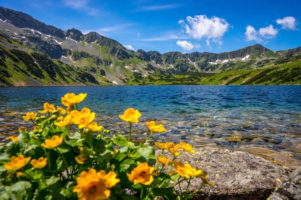 Fototapeta Dolina Pięciu Stawów w Tatrach - obraz na płótnie